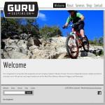 Guru Suspension Website